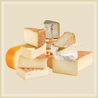 Cheese Dairy Products