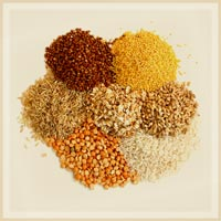 Grains Products Page