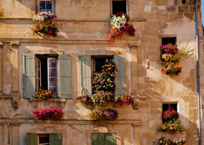 flowering windows
