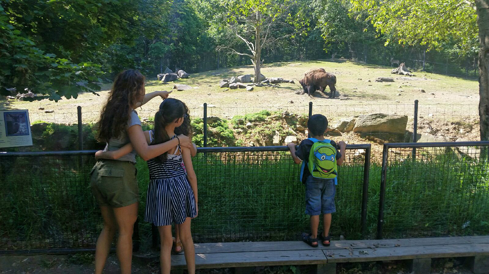 What I learned at the zoo with my family