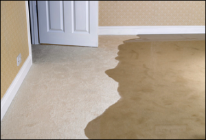Water Damage Restoration in Moorpark CA