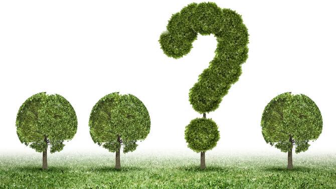 BirdDog Inspection System Answer Tree   Asurio, Inc. USA