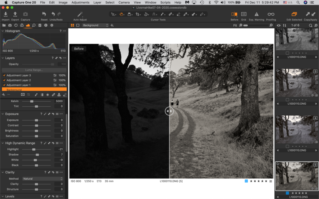 Ultimate image with Leica M10 Monochrom and Capture One Pro