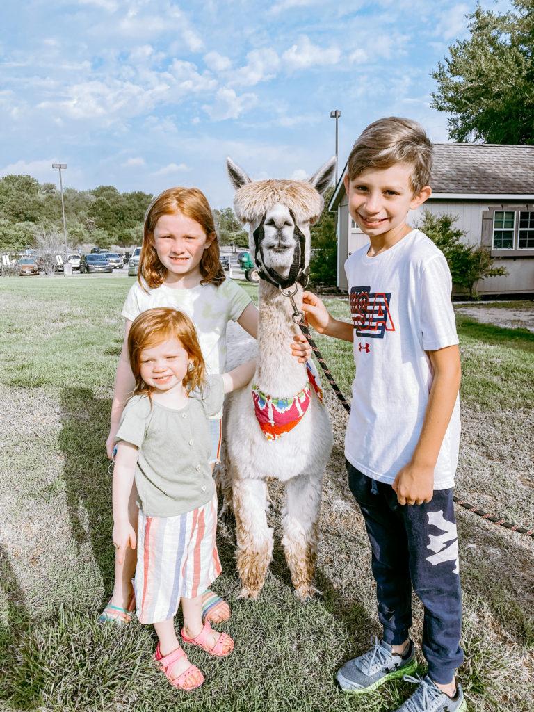 hyatt regency lost pines hill country family travel vacation