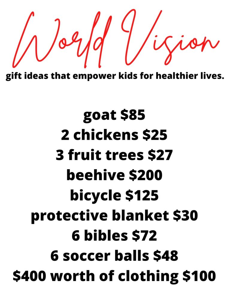 World Vision Christmas gift that can change a life