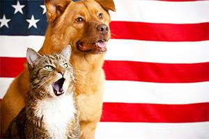 cat-and-dog-pledge
