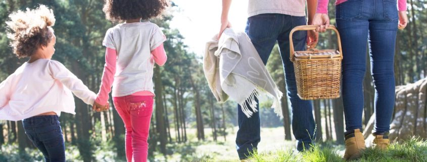 family heading to a picnic