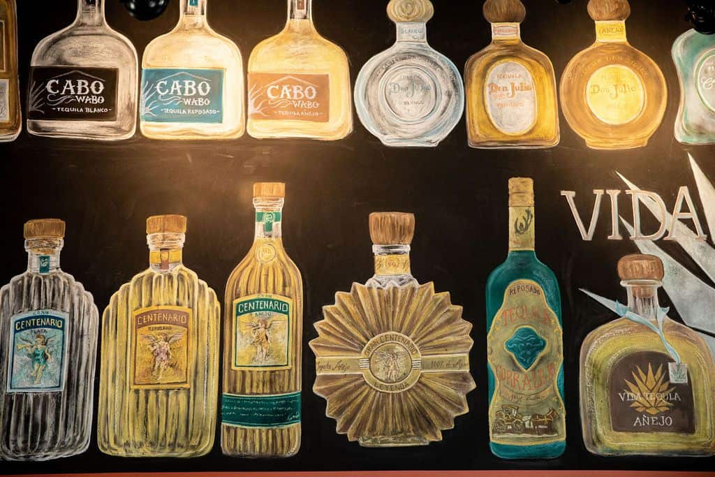 Tequila vs. Mezcal: What are the Differences?