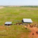 Harrold Cattle Grazing Land