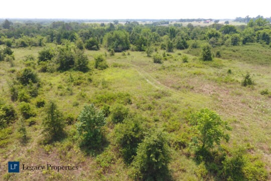 Montague Wooded Property
