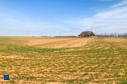 Hildebrand Farm