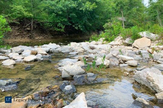 Dixon Creek Ranch | Tract 3