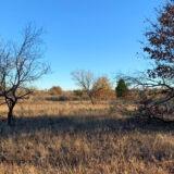 Cottonwood Creek Ranch | Tract 7