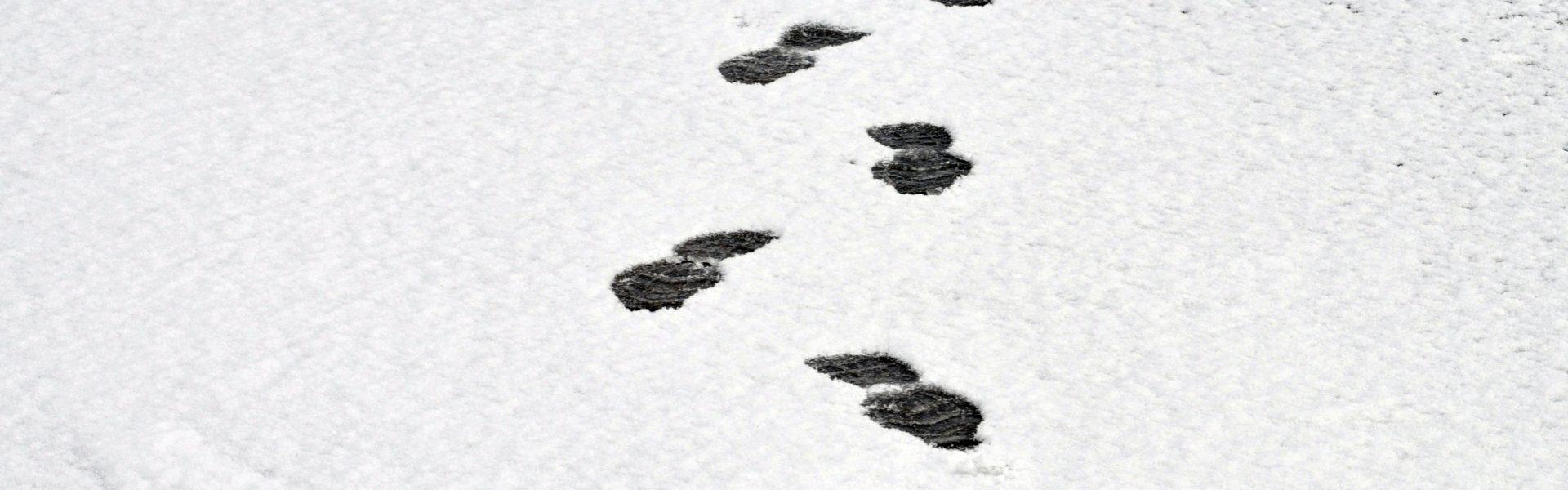 My Family Footprints