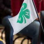 Homeworks moves local 4-H endowments forward