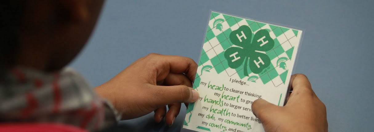 4-H pledge
