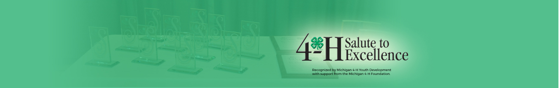 4-H Salute to Excellence Awards