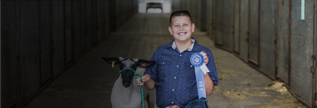 Boy with lamb and blue ribbon
