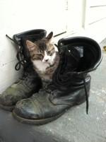 Louie Marine Boots