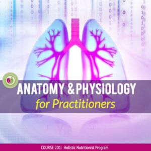 anatomy and physiology course for practitioners