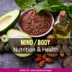 mind body nutrition course nutraphoria