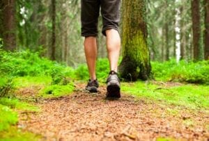 Man hiking in the East Texas Forrest. background Image