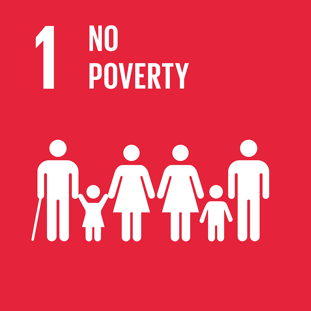 SDG1 No Poverty