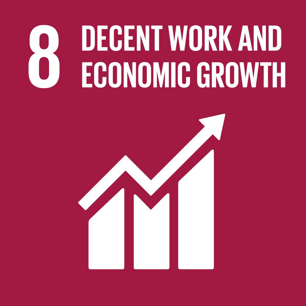 SDG8 Decent Work and Economic Growth