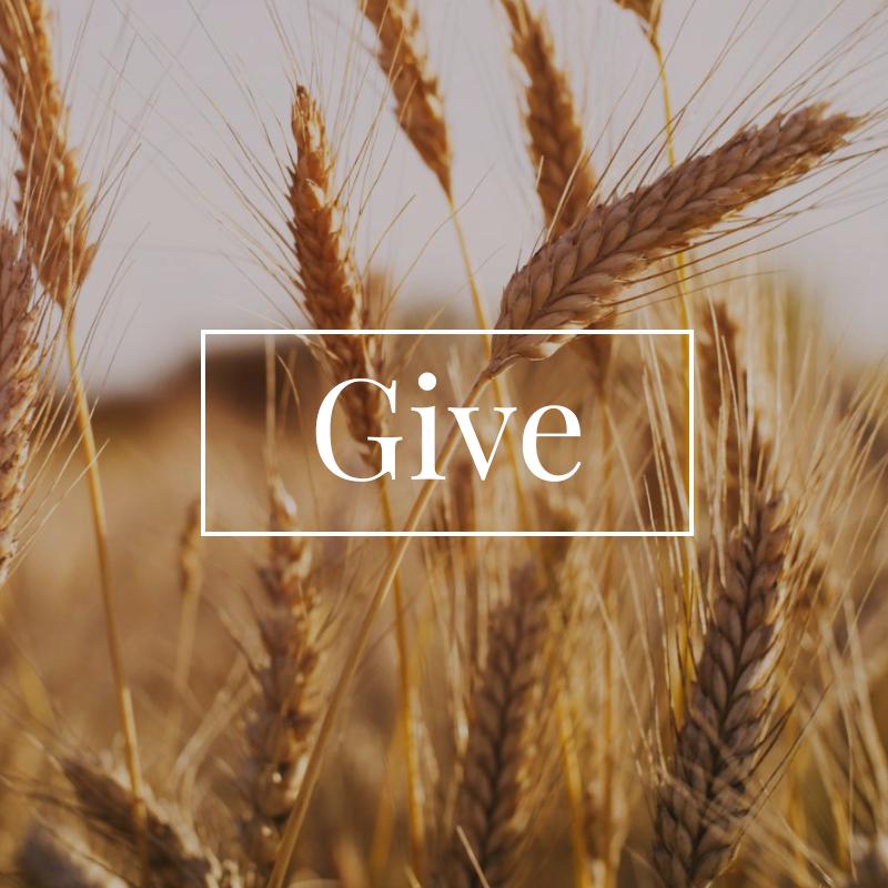 GiveSquare1