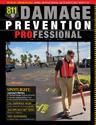 Damage Prevention Professional Spring 2012