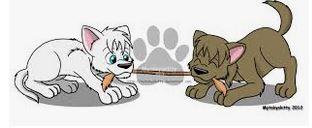 Dog Tug of War - setting the basic rules dogspeaking.com