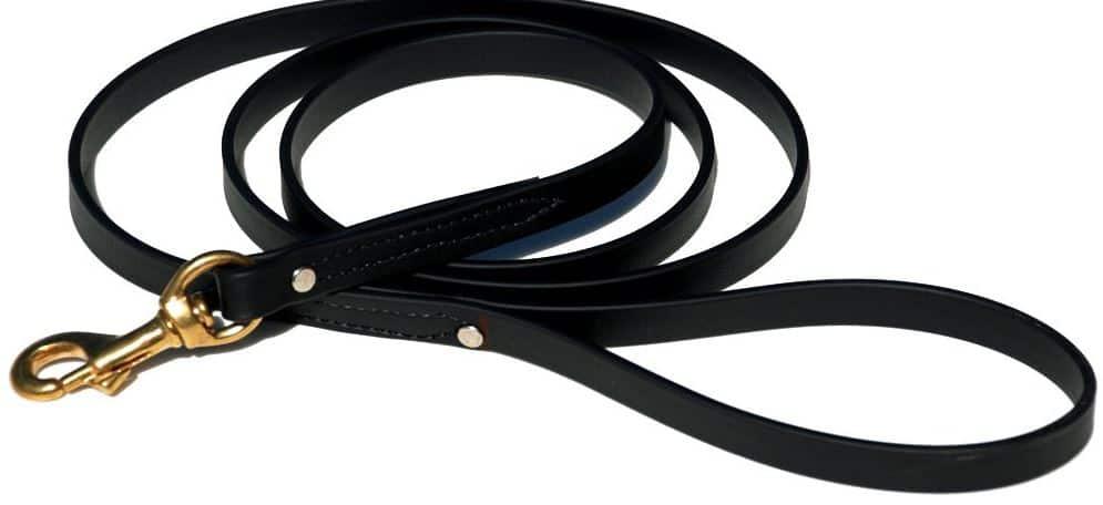 Best Dog Leash and Dog Leash Types, Biothane dog leash dogspeaking.com