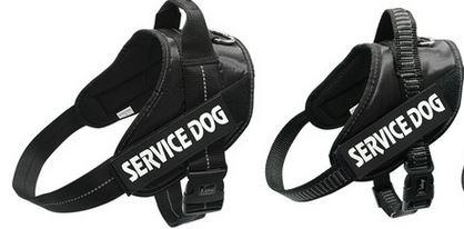 Tough service dog harness