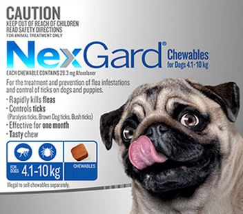 when to take dog to vet. NexGard flee and tick prevention . Dogspeaking.com