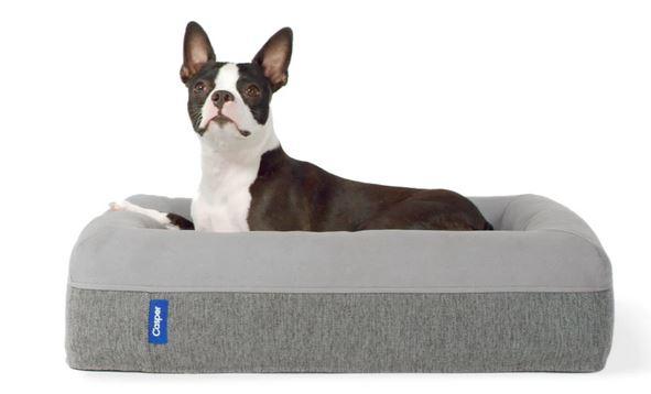 Casper dog bed - the best dog bed