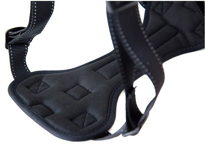 Dog harness for car and seat belt attachments review mighty paws harness