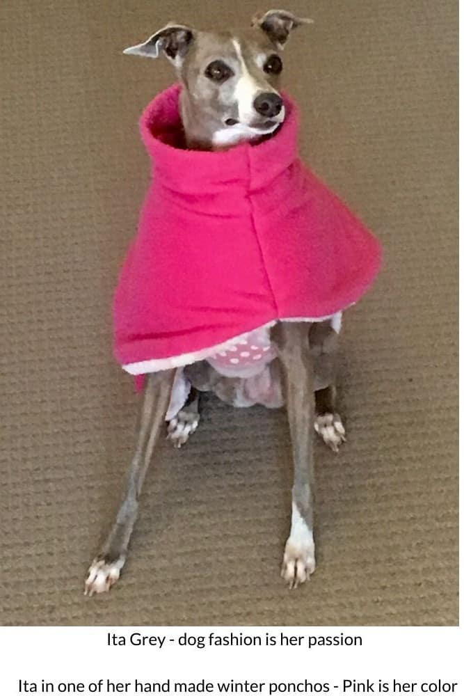 Ita Grey fashion editor for www.dogspeaking.com dog coats