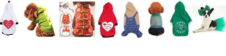 dog clothes - dog fancy dress - photo of 8 great dog costumes