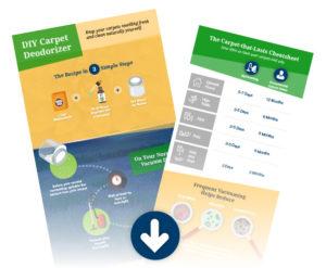 natural-carpet-deorderizer-diy-infographics-01