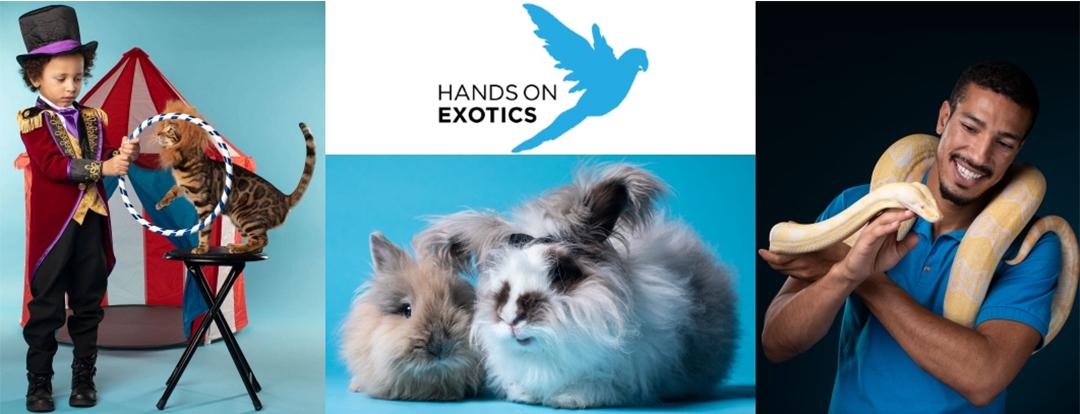 Hands on exotics header