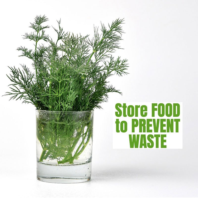 bunch-of-fresh-chopped-dill-in-a-jug-with-water-on-a-white-background-picture-id1138122863