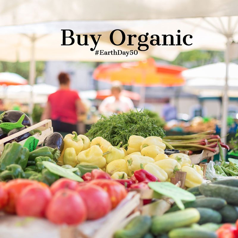 farmers-food-market-stall-with-variety-of-organic-vegetable-picture-id487491992