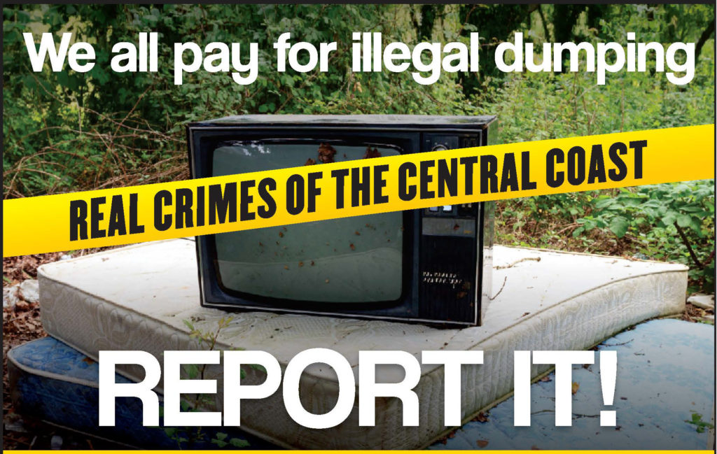 we all pay for illegal dumping