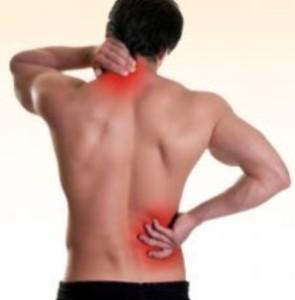 Spine Pain Rehabilitation