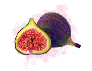 City Palate, guide to the good life in Calgary eat this 2018-07-08 Figs