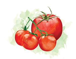 City Palate, guide to the good life in Calgary Eat This 2018-09-10 tomatoes