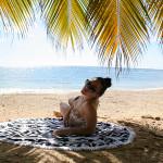 dominican-republic-beach-body