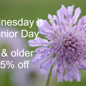 Senior Discount Day graphic