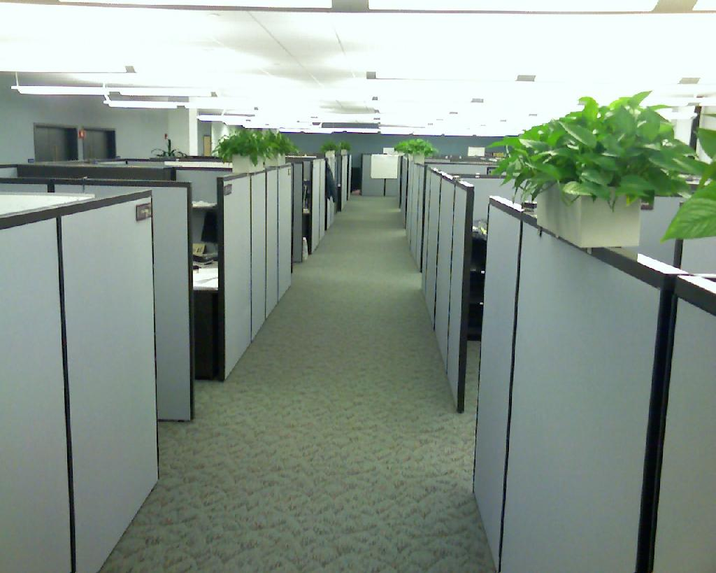 picture-cubicles