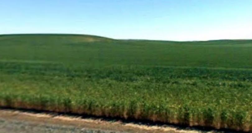 7.5 acres Prescott, Washington, $15,000